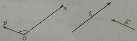 Bài tập trắc nghiệm Hình học 10 | Câu hỏi trắc nghiệm Hình học 10