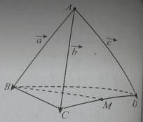 Bài tập trắc nghiệm Hình học 11   Câu hỏi trắc nghiệm Hình học 11