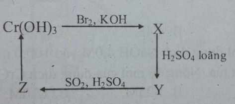 Bài tập trắc nghiệm Hóa 12 | Câu hỏi trắc nghiệm Hóa 12