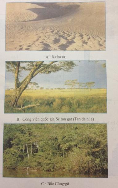 Câu 1 SGK Địa lý 7 trang 39