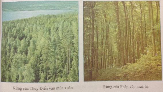 Câu 1 SGK Địa lý 7 trang 59