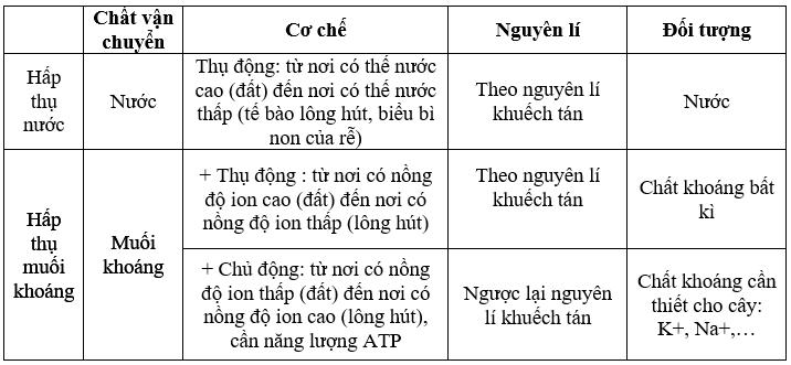 Giải bài 2 trang 9 sgk Sinh 11 | Để học tốt Sinh 11