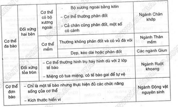 Giải bài 4 trang 101 sgk Sinh 7 | Để học tốt Sinh 7