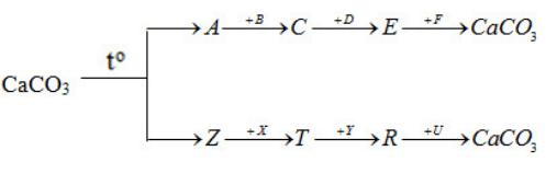 Giải sách bài tập Hóa học 12 | Giải sbt Hóa học 12