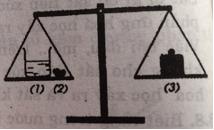 Giải sách bài tập Hóa 8 | Giải bài tập Sách bài tập Hóa 8