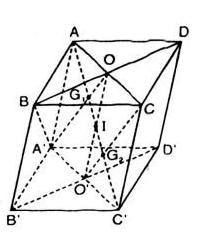 Giải bài tập Đại số 11   Để học tốt Toán 11