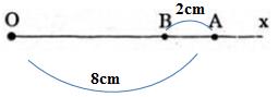 Giải bài 55 trang 124 SGK Toán 6 Tập 1 | Giải toán lớp 6