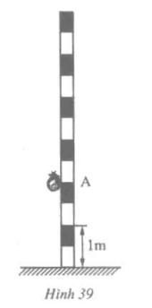Giải bài tập Toán 6 | Giải toán lớp 6