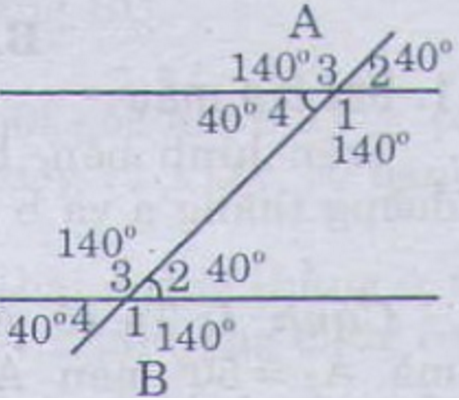 Giải bài 22 trang 89 Toán 7 Tập 1 | Giải bài tập Toán 7