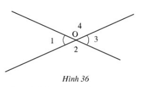 Giải bài 52 trang 101 Toán 7 Tập 1 | Giải bài tập Toán 7
