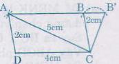 Giải bài 1 trang 131 SGK Toán 8 Tập 2 | Giải toán lớp 8