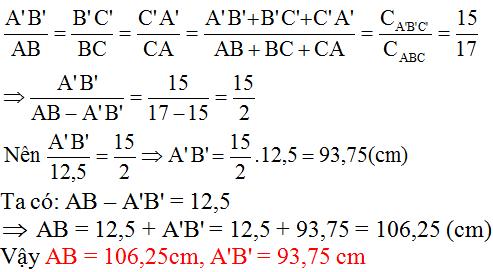 Giải bài 31 trang 75 SGK Toán 8 Tập 2 | Giải toán lớp 8