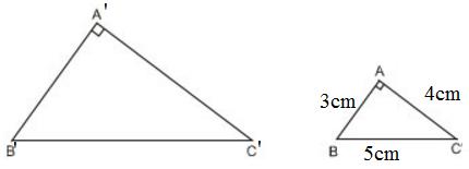 Giải bài 47 trang 84 SGK Toán 8 Tập 2 | Giải toán lớp 8
