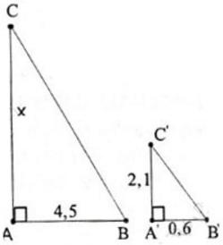 Giải bài 48 trang 84 SGK Toán 8 Tập 2 | Giải toán lớp 8
