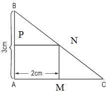 Giải bài 49 trang 32 SGK Toán 8 Tập 2 | Giải toán lớp 8