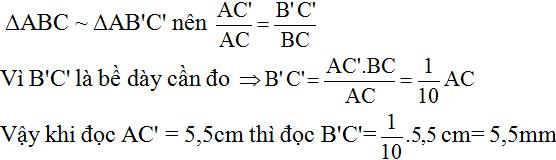 Giải bài 55 trang 87 SGK Toán 8 Tập 2 | Giải toán lớp 8