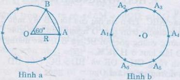 Giải bài 10 trang 71 SGK Toán 9 Tập 2 | Giải toán lớp 9