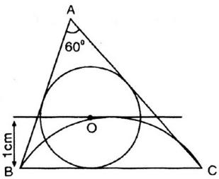Giải bài 14 trang 135 SGK Toán 9 Tập 2 | Giải toán lớp 9