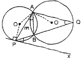 Giải bài 28 trang 79 SGK Toán 9 Tập 2 | Giải toán lớp 9