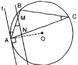 Giải bài 33 trang 80 SGK Toán 9 Tập 2 | Giải toán lớp 9