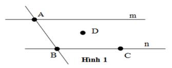 Trắc nghiệm Chương 1 phần Hình học Toán 6 - Bài tập Toán lớp 6 chọn lọc có đáp án, lời giải chi tiết