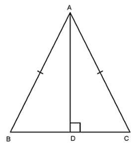 Trắc nghiệm: Các trường hợp bằng nhau của tam giác vuông - Bài tập Toán lớp 7 chọn lọc có đáp án, lời giải chi tiết