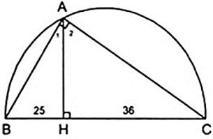 Bài tập: Các trường hợp đồng dạng của tam giác vuông | Lý thuyết và Bài tập Toán 8 có đáp án