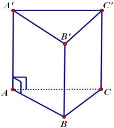Lý thuyết: Hình lăng trụ đứng | Lý thuyết và Bài tập Toán 8 có đáp án