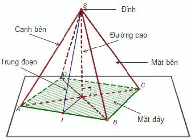 Lý thuyết: Hình chóp đều và hình chóp cụt đều | Lý thuyết và Bài tập Toán 8 có đáp án